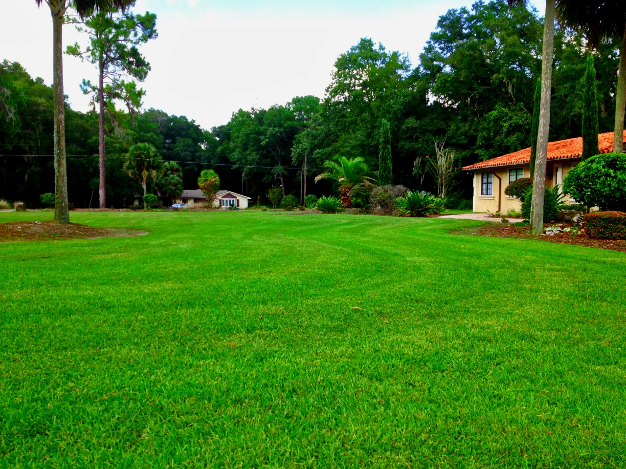 Lawn Care and Landscaping in Jacksonville, Gainesville ...