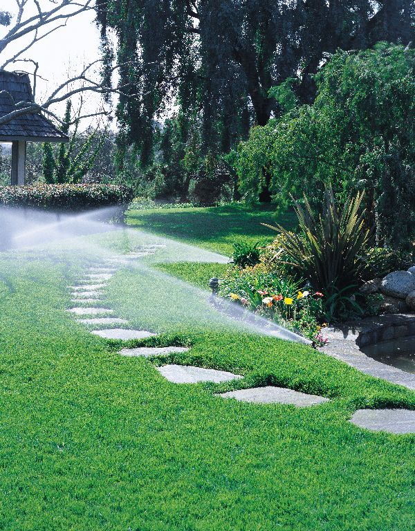 Lawn care and landscaping in jacksonville gainesville for Landscaping rocks jacksonville